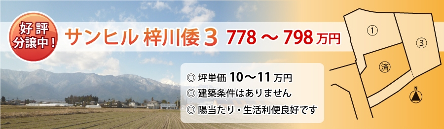 top43_sunhill_azusagawayamato3_s2.jpg