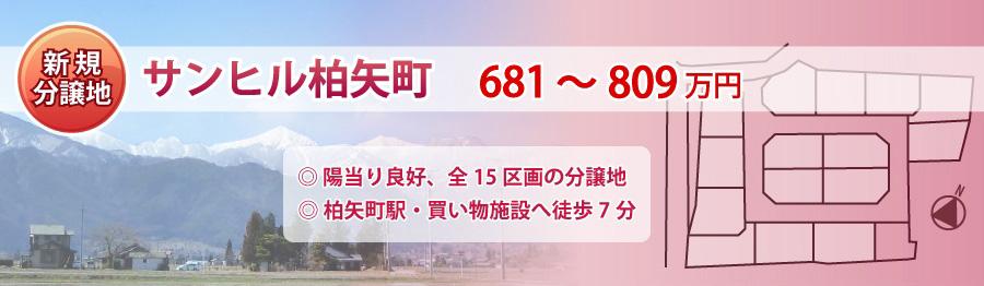 top46-3_sunhill_hakuyachou.jpg