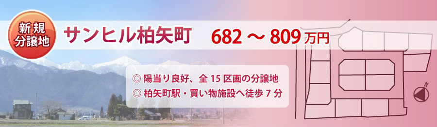 top46_sunhill_hakuyachou.jpg